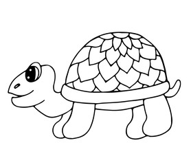 Cute tortoise isolated on the white background