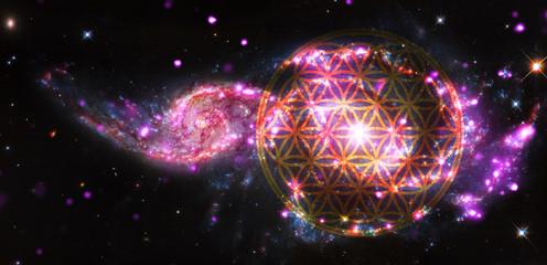 Blume des Lebens - Cosmos