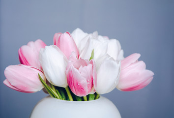 Ping and white tulips on white simple vase on gray background
