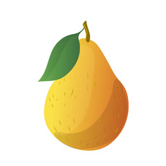 Cartoon yellow pear. Vector illustration