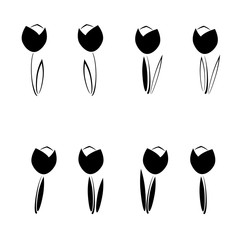Set of tulips flowers. Vector illustration