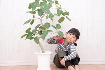 観葉植物と子供