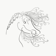 coloring,The horse's head with a fluffy mane painted graceful lines with swirls