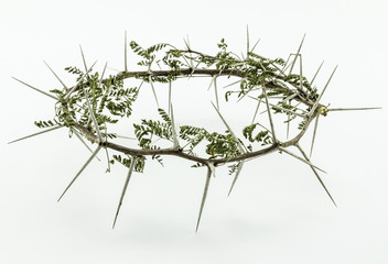 Crown of thorns with leaves - conceptual image on white background of Jesus Christ's crucifixion