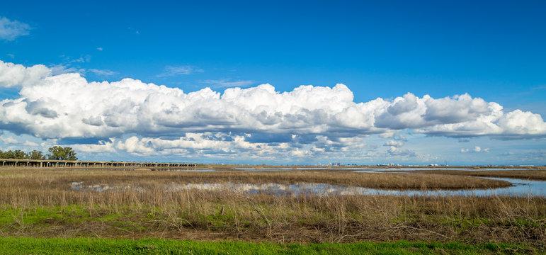 Yolo bypass wildlife area marshland pano