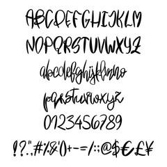 Vector hand painted latin alphabet