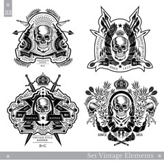Skull front view with vintage elements and weapon. Set of vintage banners on white