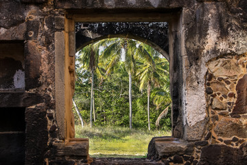 View of palms through a window of  the old fortress El Castillo Garcia D´Avil, Praia do Forte, Bahia, Brazil