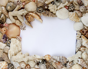 Seashells and corals isolated picture frame
