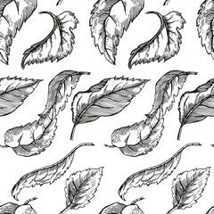 Apple tree sketch for Design