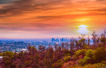 Wall Mural - Pink sunset in Los Angeles