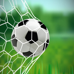 Soccer or Football 3d Ball in the Net on green background.