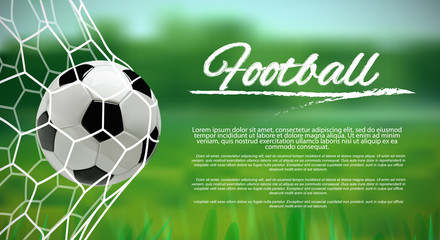 Soccer or Football 3d Ball in the Net on green background ond place for text.