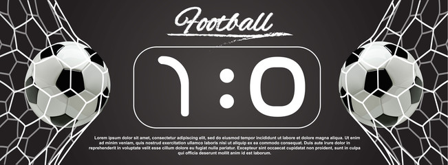 Soccer or Football Ball in the Net