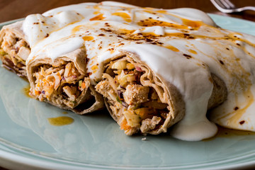 Chicken shawarma kebab with yogurt and fried butter sauce / Tantuni Special.