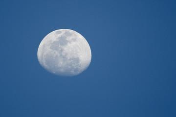 Nearly full moon, Cape Coral, Florida, USA