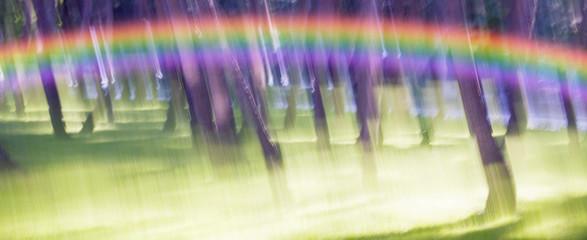 Park motion blur