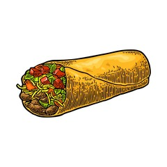Burrito - mexican traditional food. Vector color vintage engraved