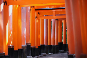 Red torii gate at Fushimi Inari in Kyoto, Japan. At the gates of Buddhist sutras, the sacred religious texts.