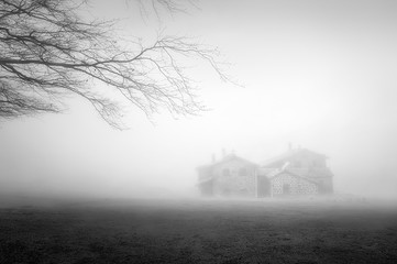 Wall Mural - mystery house in the forest with fog