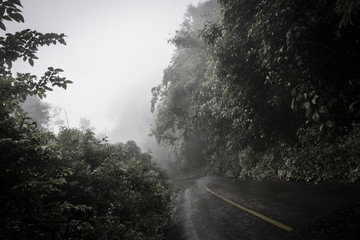 Jungle Mountain Road Northern Thailand
