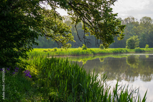 lake in the park stockfotos und lizenzfreie bilder auf. Black Bedroom Furniture Sets. Home Design Ideas
