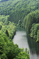 View from the Esch-Sur-Sûre dam of the River Sauer flowing through a forest, Oesling, Ardennes, Luxembourg, May 2009