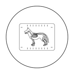 Dog x-ray icon in outline style isolated on white background. Veterinary clinic symbol stock vector illustration.