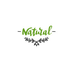 Hand drawn Natural lettering. Vector Bio organic green logo template.