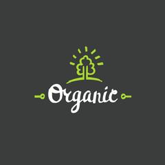 Hand drawn Organic lettering. Vector Bio organic green logo template.