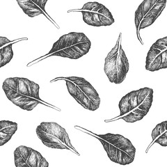 Seamless pattern design or background with spinach. Hand drawn illustration by ink and pen sketch set. Design for fruit and vegetable products and health care goods.