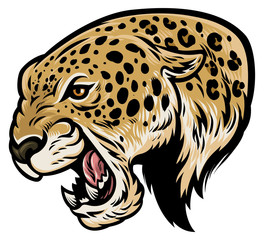 angry aggressive leopard