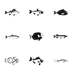 Marine fish icons set, simple style