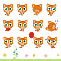 Big set cute little kitten cat. Collection isolated cartoon kitten cat in different poses.