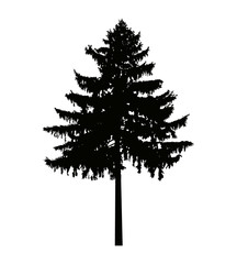 Image silhouette of pine tree. Can be used as poster, badge, emblem, banner, icon, sign, decor.
