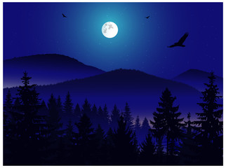 Panorama of mountains. Moonlight.  Mist. Flying eagles.