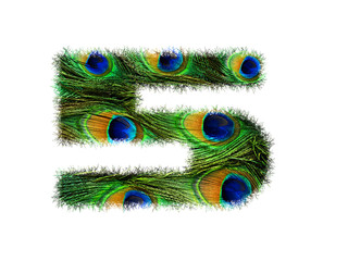 High resolution font number 5 made of peacock feathers pattern isolated on white background