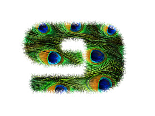 High resolution font number 9 made of peacock feathers pattern isolated on white background