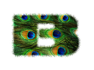 High resolution upper case letter B made of peacock feathers alphabet isolated on white background