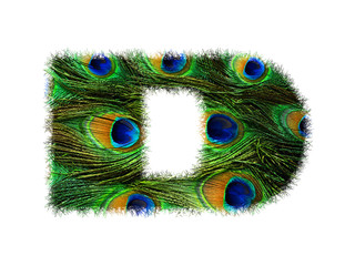 High resolution upper case letter D made of peacock feathers alphabet isolated on white background