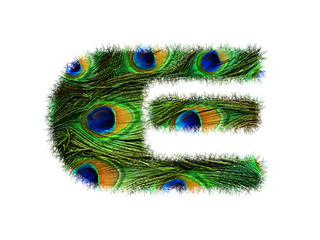 High resolution upper case letter E made of peacock feathers alphabet isolated on white background