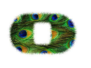 High resolution upper case letter O made of peacock feathers alphabet isolated on white background