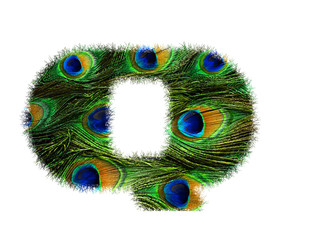 High resolution upper case letter Q made of peacock feathers alphabet isolated on white background