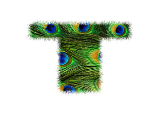 High resolution upper case letter T made of peacock feathers alphabet isolated on white background