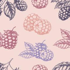 Raspberry blackberry seamless pettern. Vector illustration