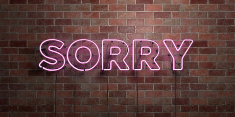 SORRY - fluorescent Neon tube Sign on brickwork - Front view - 3D rendered royalty free stock picture. Can be used for online banner ads and direct mailers..