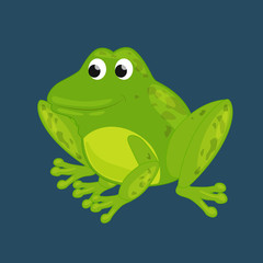Vector illustration of a cute green frog