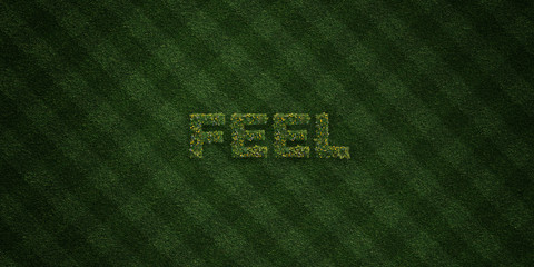 FEEL - fresh Grass letters with flowers and dandelions - 3D rendered royalty free stock image. Can be used for online banner ads and direct mailers..