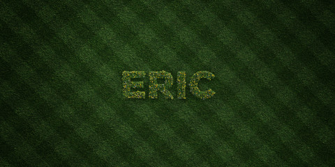 ERIC - fresh Grass letters with flowers and dandelions - 3D rendered royalty free stock image. Can be used for online banner ads and direct mailers..