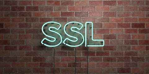 SSL - fluorescent Neon tube Sign on brickwork - Front view - 3D rendered royalty free stock picture. Can be used for online banner ads and direct mailers..